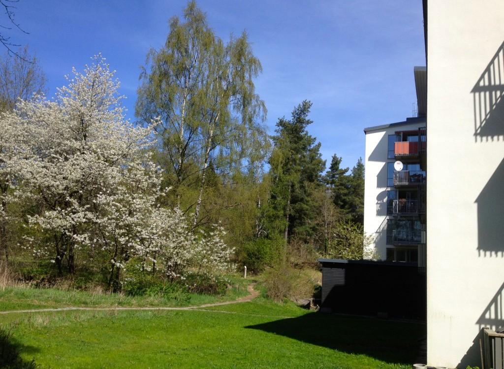 Sommar vid Hovstagränd 7
